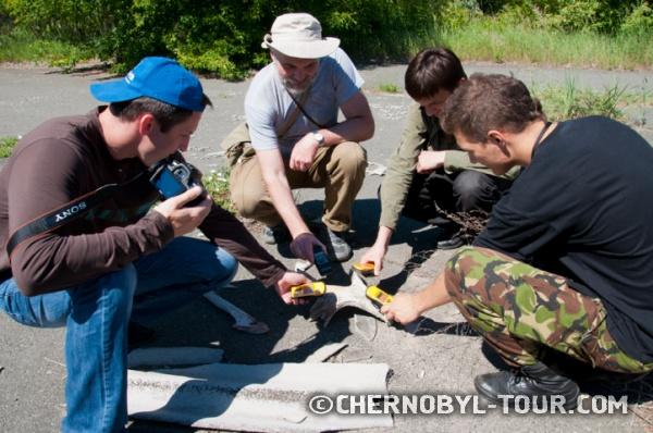Изучение радиационного излучения рогов лося